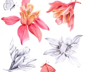 Fuchsias with butterfly watercolor hand drawn vector