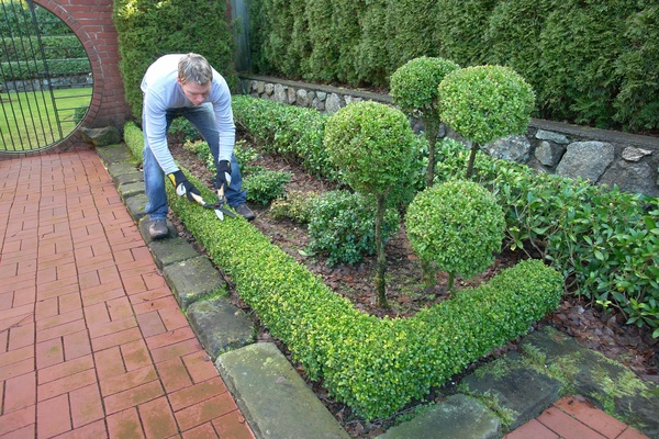 38+ Gardening Cutting Files Kwd140 Crafter Files