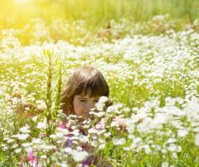 Little girl in wildflower meadow Stock Photo