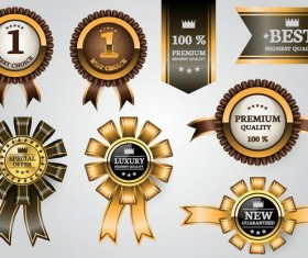 Luxury golden labels with ribbon banners vector