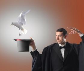 Magician change pigeons 01
