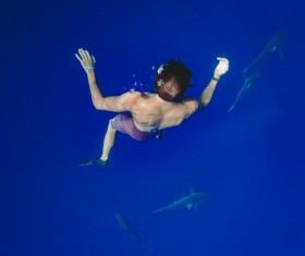 Man swimming with shark Stock Photo
