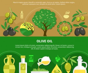 Olive oil flat infographic vector