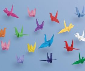 Origami birds colored vector