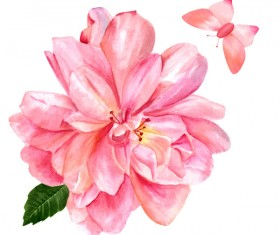 Pink flower watercolor vector