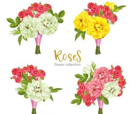 Rose flower illustration vector set