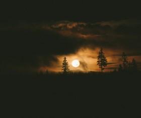 Round moon in dark landscape Stock Photo