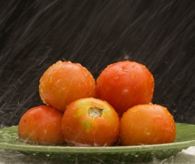 Tomatoes in the rain Stock Photo
