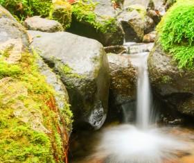 Tropical rainforest creek Stock Photo