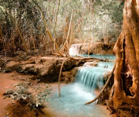 Tropical rainforest waterfall Stock Photo 01