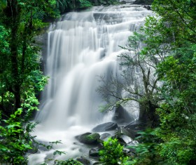 Tropical rainforest waterfall Stock Photo 03