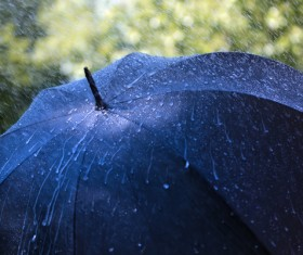 Umbrella in the rain Stock Photo 01