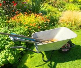 Wheelbarrow in the garden Stock Photo