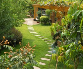 beautiful garden Stock Photo 01