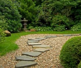 beautiful garden Stock Photo 04
