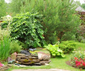 beautiful garden Stock Photo 05