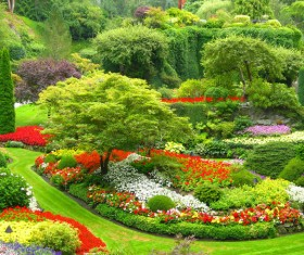 beautiful garden Stock Photo 06
