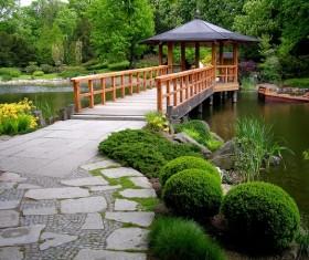 beautiful garden Stock Photo 07