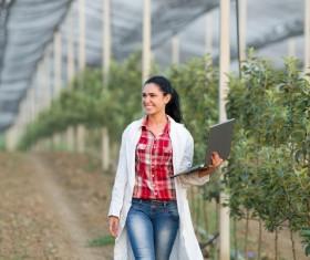 Agronomist in greenhouse Stock Photo