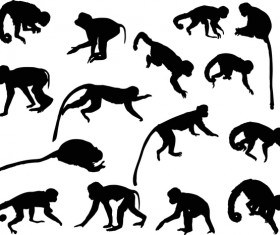 Animal monkey coll large silhouette vector