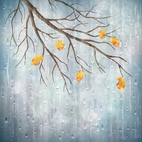 Autumn leaves with rain vector