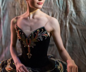 Beautiful female ballet dancer Stock Photo 02