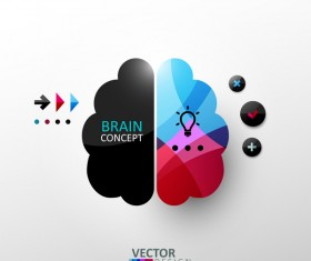 Brain concept infographic vectors