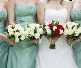 Bride and bridesmaid holding bouquet Stock Photo 04