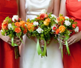 Bride and bridesmaid holding bouquet Stock Photo 06