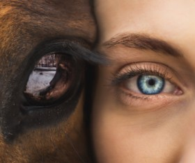 Closeup human eye and horse eye Stock Photo
