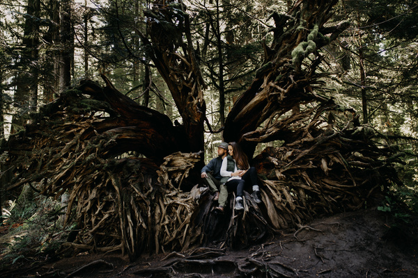 Couple posing on big tree roots Stock Photo
