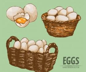 Egg hand drawing vectors set 08