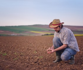 Farmer viewing the soil Stock Photo