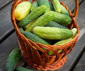 Fresh cucumbers on the table Stock Photo