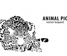 Hand drawn leopard vector illustration 01