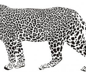 Hand drawn leopard vector illustration 02