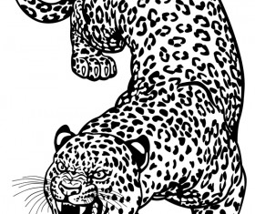 Hand drawn leopard vector illustration 03