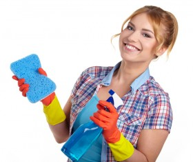 Housewife doing sanitary cleaning Stock Photo 01