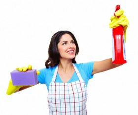 Housewife doing sanitary cleaning Stock Photo 08