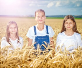 Kids in the wheat field Stock Photo 01
