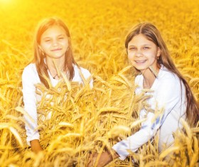 Kids in the wheat field Stock Photo 04