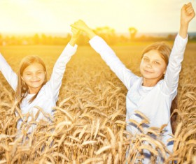 Kids in the wheat field Stock Photo 06