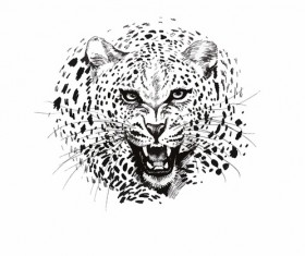 Leopard head vector illustration 01