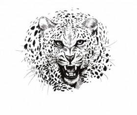 Leopard head vector illustration 01