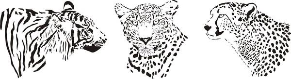 Leopard head vector illustration 02