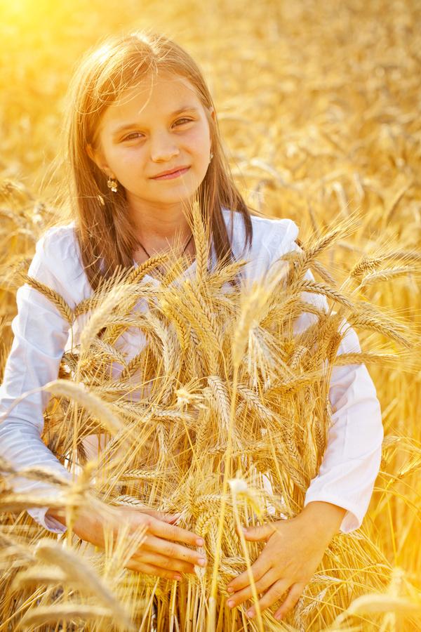Little girl in wheat field Stock Photo 01