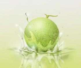 Melon splash background vector