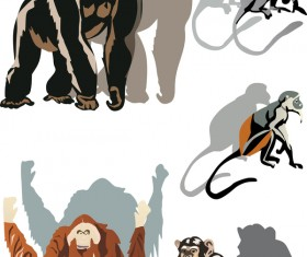 Monkey color shade vector