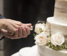 Newly-married couple cutting cake Stock Photo
