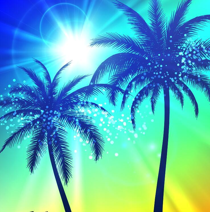 Palm tree silhouette with sunlight vector